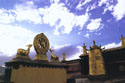 5 Days of Lhasa City Tour