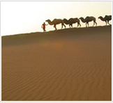 Silk Road Exploration Tours