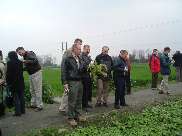 guests stop at a vegetable farm