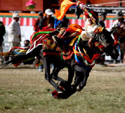 8 Days Yushu Horse Racing Festival Tour