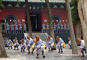 Kunfu Show